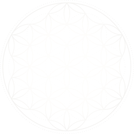Flower of Life - 25 percent.png