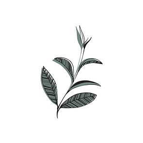Jess Tea Leaves (11.21.20).png