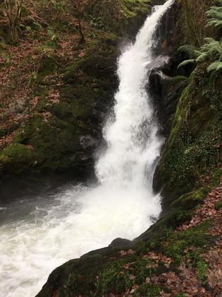 Dolgoch waterfall