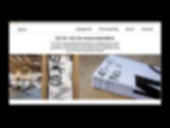 Website_Visual13.jpg