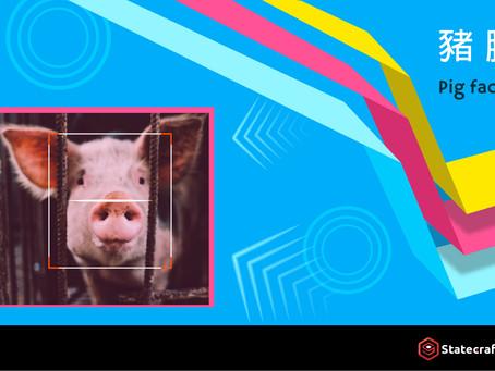 動態『豬臉識別』提升養豬的水平