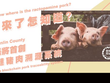 萊豬來了怎知道? 雲林縣將首創區塊鏈豬肉溯源系統