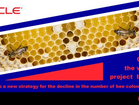 甲骨文與世界蜜蜂計畫用區塊鏈 為全球蜂群數量下降研擬新戰略