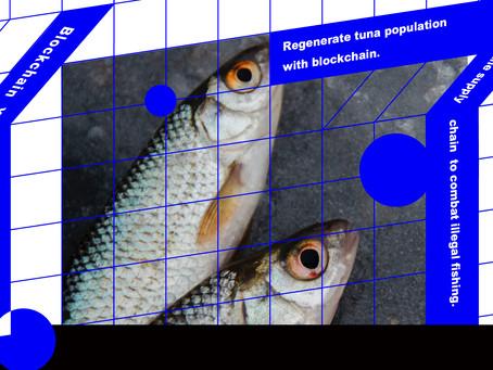 用區塊鏈復育金槍魚種群 追蹤供應鏈打擊非法捕魚
