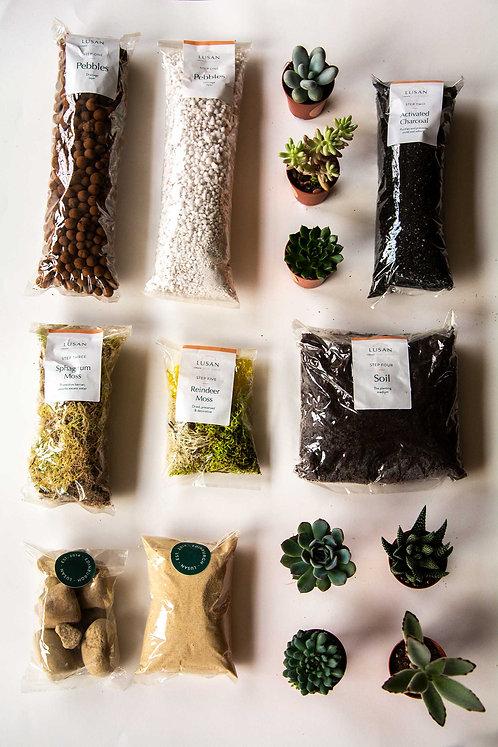 (Extra Large) Succulent Terrarium Kit