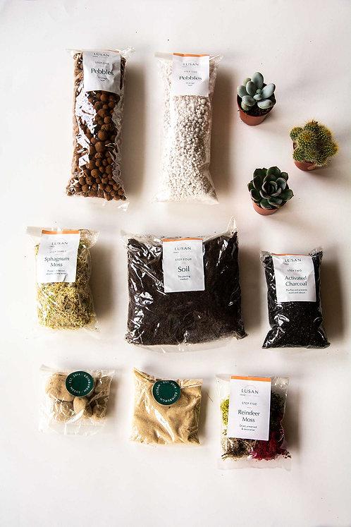 (Medium) Mixed Terrarium Kit
