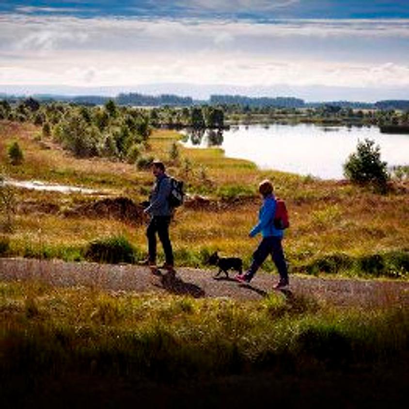 Lough Boora - Members & Friends Walk