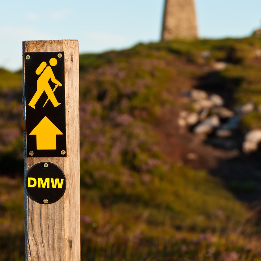 Dublin Mountain Way 1 - Members & Friends Walk