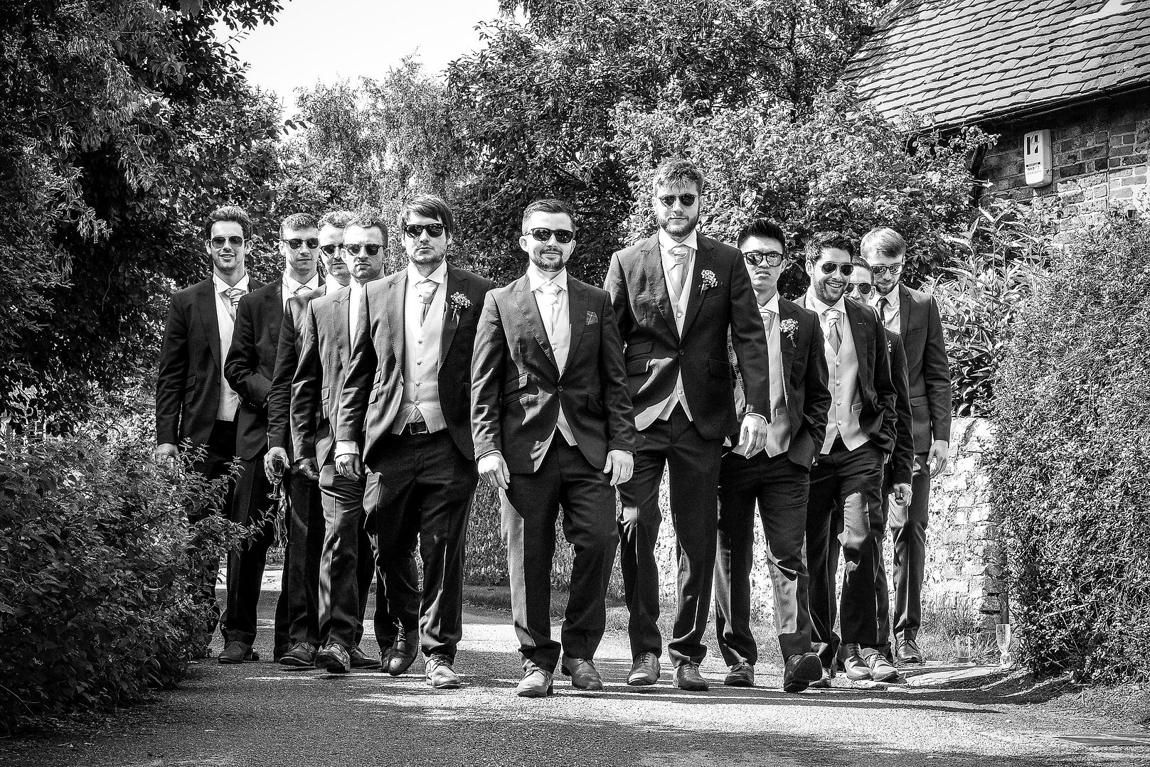 Resovior dogs wedding photograph