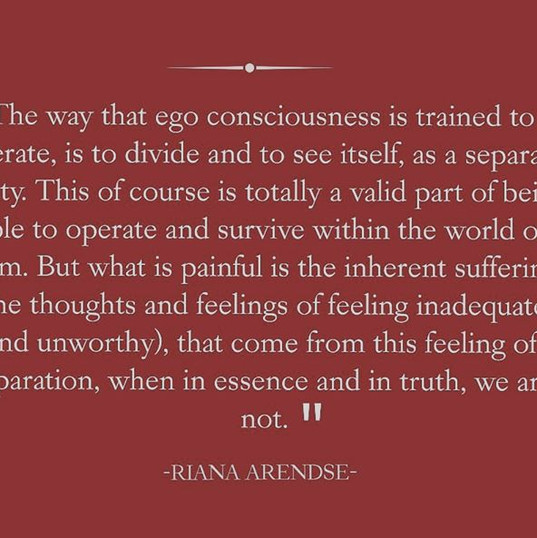 """""""The way that ego consciousness is train"""