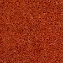 1P2842-普裕-皮紋.jpg