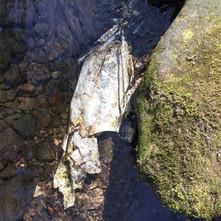 Fake Jellyfish in a stream