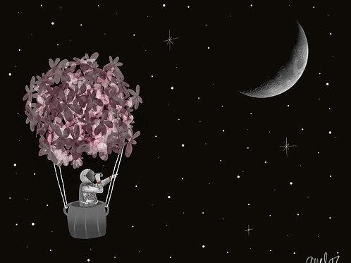 Tus sueños en las estrellas