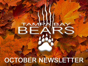 Fall is in the air... what are the bears up to?