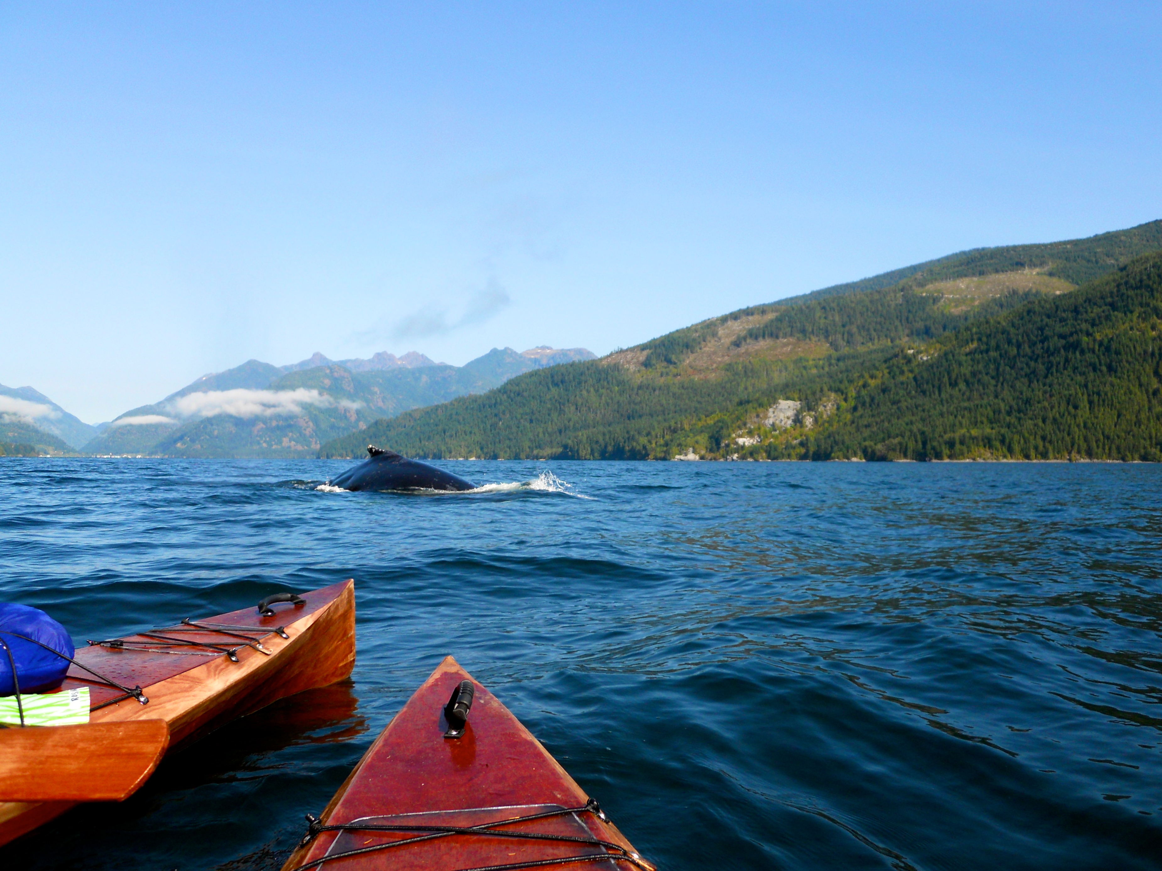 Tours On Vancouver Island