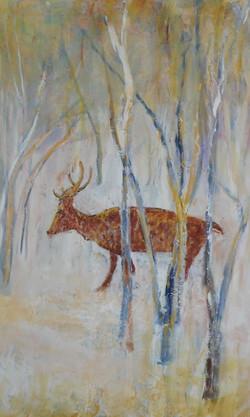 Deer in Utah 1