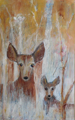 Deer in Utah 2