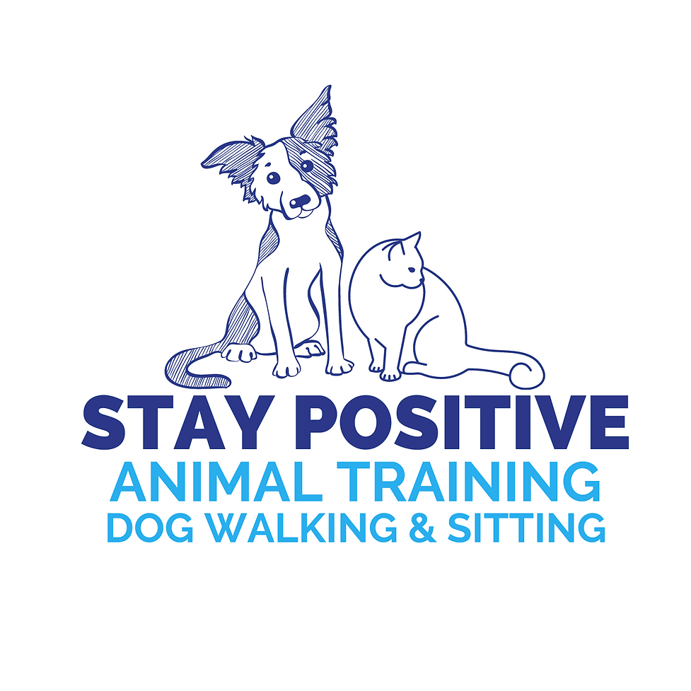 Copy of STAY POSITIVE(5).png