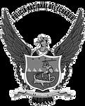 PN Logo Grey.png