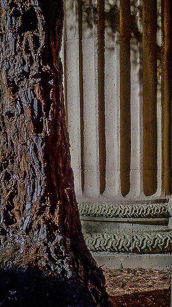 PFAColumn&Tree,Color.jpg