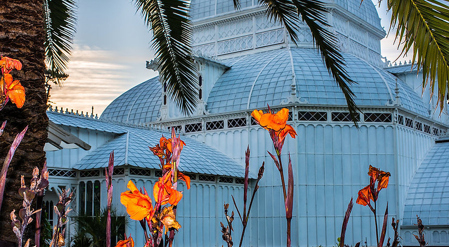 BirdsOfParadFlwrs&Conservatory.jpg