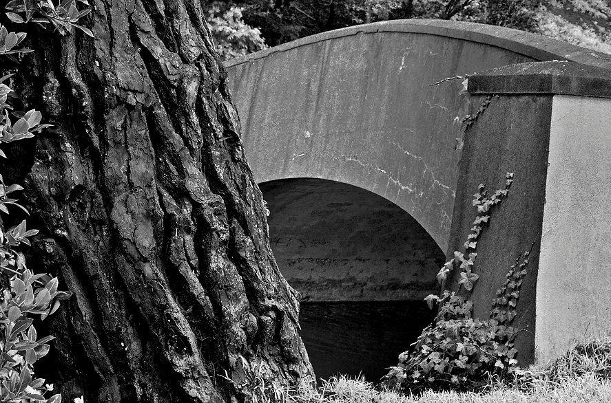 ConcreteBr,StoweLake B&W.jpg