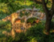 SunsetLite,StoneBr, Stow.jpg