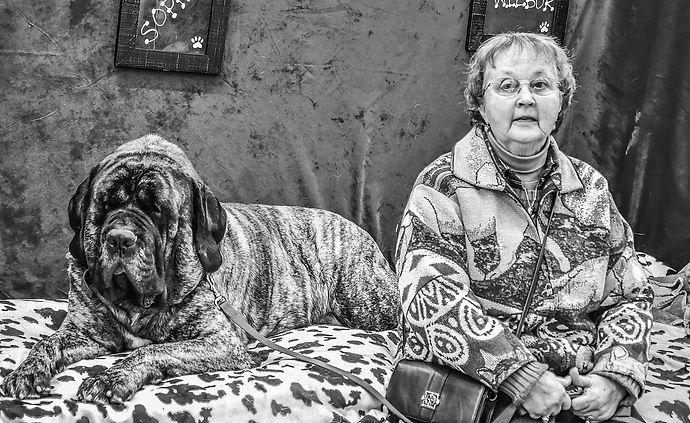 ItalMastiff&Owner,DogShow.jpg