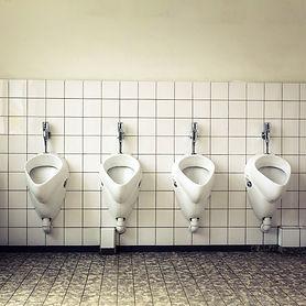 depuratore-aria-cattura-odori-di-urina-e