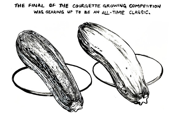 courgette comp3.jpg
