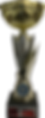 trophy IMG_5078.png