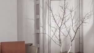 Escultura árbol