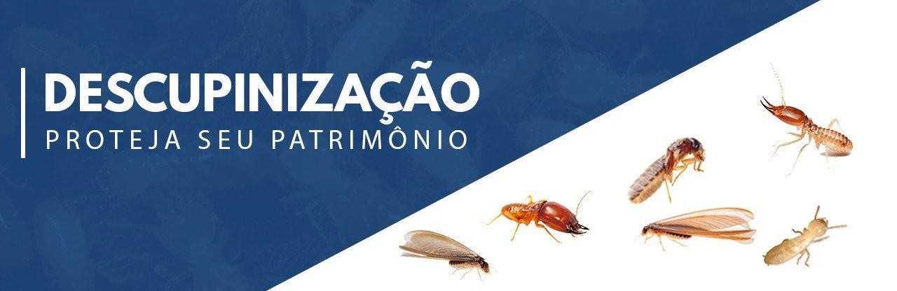Dedetizadora em Belém e Fortaleza.jpg