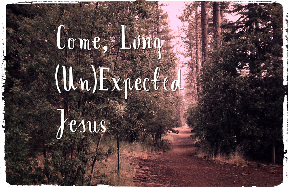 Come Thou Long (Un)Expected Jesus by Melissa Maimone