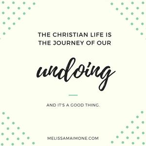 Befriending Anne by Melissa Maimone