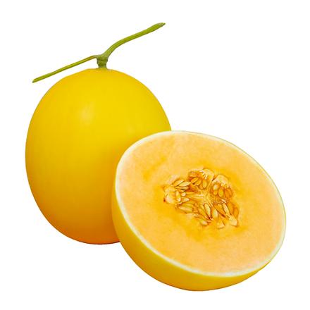 OrangeGolden.png