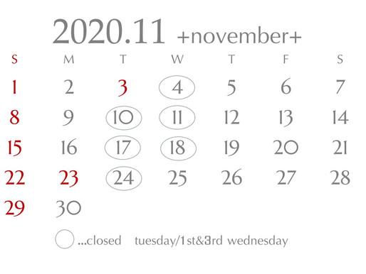 schedule 2020.11