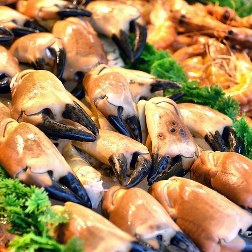 Jonah Crab Claw & Arm.