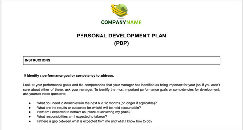 PDP Template and Guidelines | Anne Caron Consulting | HR Consulting ...