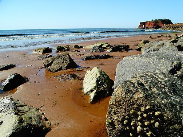 01.06.20. Receding tide at Dawlish Warren. Kathy Mead..JPG