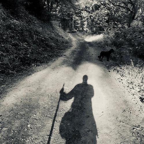 Lone Walker by Peter Morse