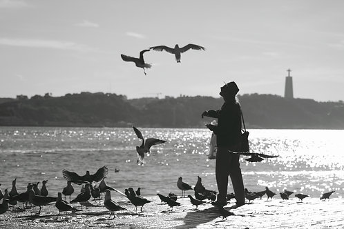 Winter Afternoon in Lisbon by Tridibesh