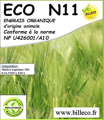 ECO N 11