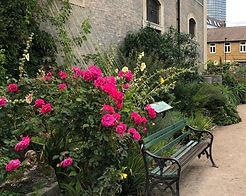 St John's Churchyard 2.jpg