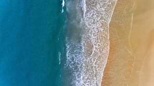 beach-2562563.jpg