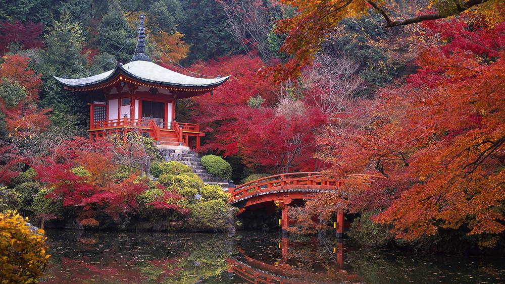 Très beau jardin japonais