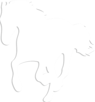 CHEVAL_30.png