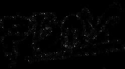 pboy logo.png