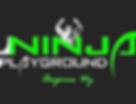 The Real Ninja Logo black2.png