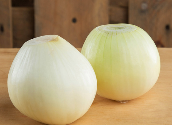 Peeled white onion (Large)